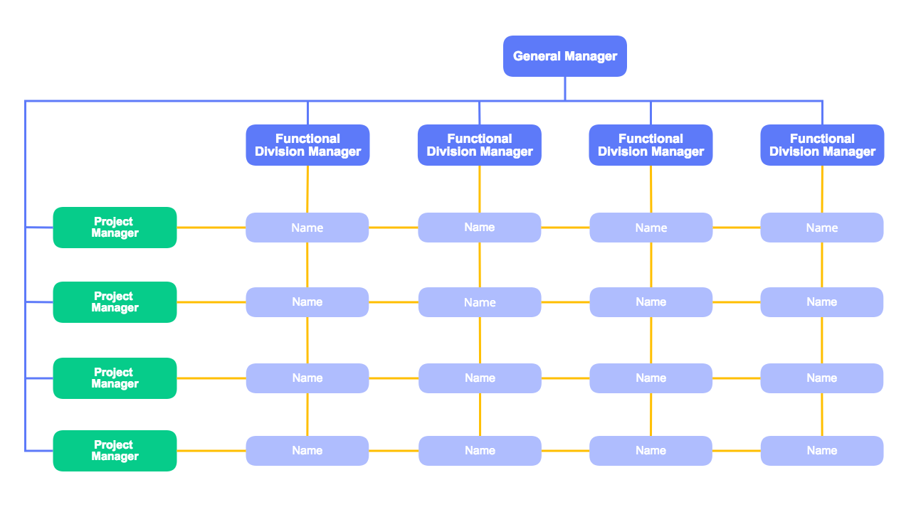 Matrix Org Structure Template